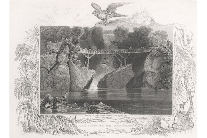 Norwich bridge, Payne, oceloryt, 1850