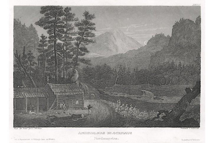 Amerika srub, Meyer, oceloryt, 1850