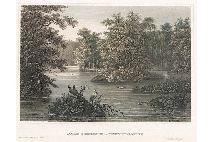 Pennsylvanie, Meyer, kolor. oceloryt, 1850