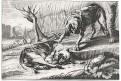 Psi, mědiryt, (18 stol.)