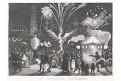 Ohnostroj Čína lampiony, oceloryt , (1840)
