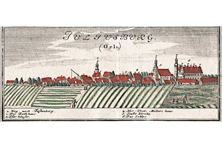 Juliusburg  Dobroszyce, Homann, mědiryt, (1740)