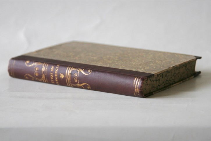 Štulc V.: Žiwot sw. Vincencia de Paul, Pha. 1844