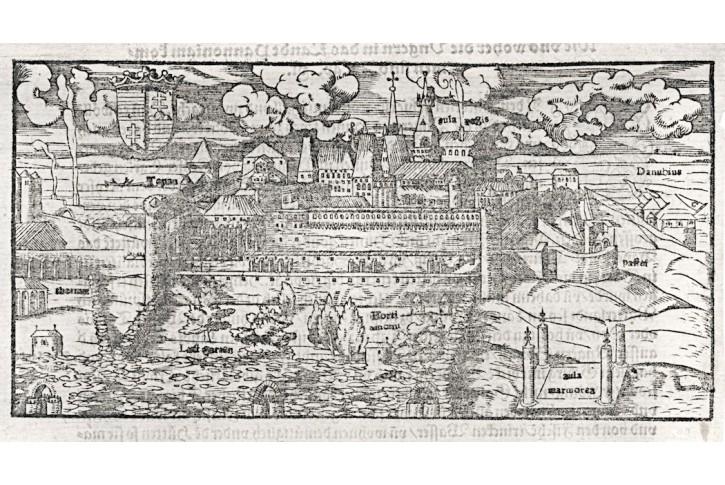Buda , Münster S., dřevořez , (16. stol.)