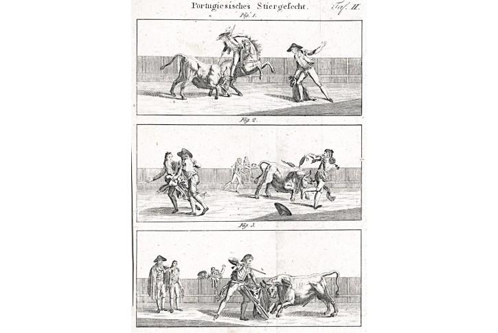 Býčí zápasy, mědiryt, 1808