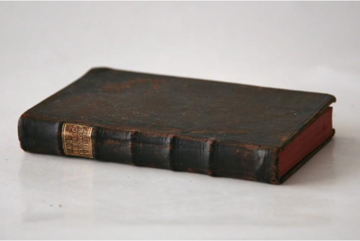 Das betrachtete Evangelium, Th 8., Bamberg 1784